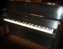 Yamaha Ebony Studio